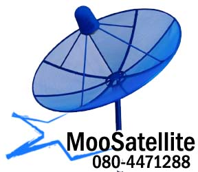 Moo Satellite